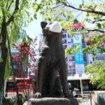 [COVID-19] Tokio registra menos de 700 nuevos positivos